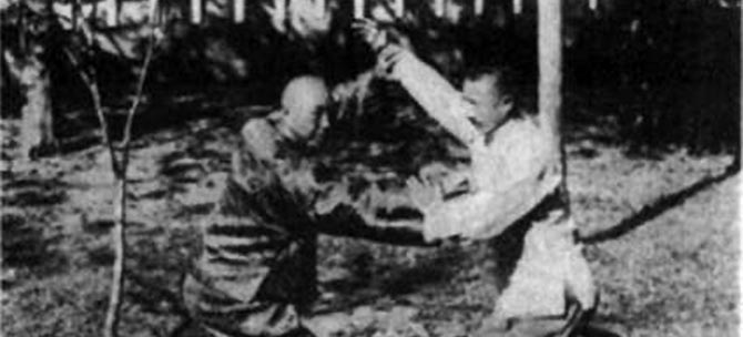 Taijiquan Sanshou